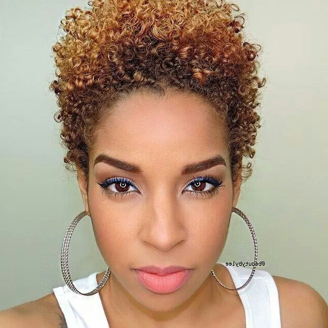 Natural Hairstyles For Short Hair With A Tight Curl Pattern With Pixie Haircuts With Tight Curls (View 21 of 25)