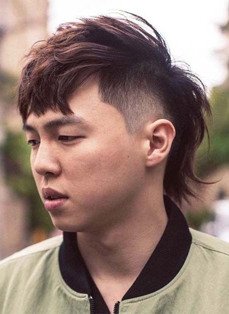 Outstanding Asian Hairstyles Men 2019 | Ideas For Fashion within Cool Silver Asian Hairstyles