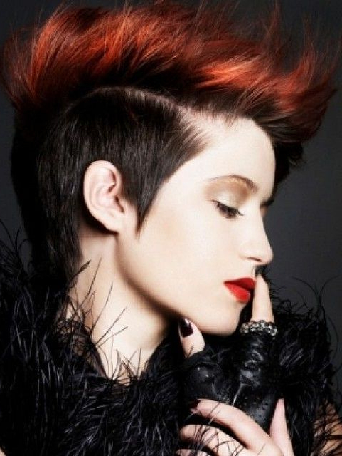 Red Hot Punk Hairstyle | Punk Haircut, Mohawk Hairstyles For Throughout Hot Red Mohawk Hairstyles (View 8 of 25)
