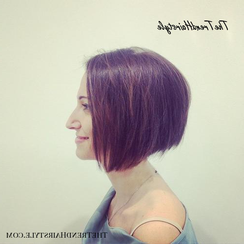 Chic Gray Blunt Haircut – 50 Spectacular Blunt Bob Inside Purple Tinted Off Centered Bob Hairstyles (View 8 of 25)