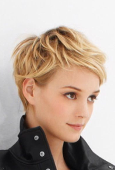 Pin On Gamine Girls for Neat Pixie Haircuts For Gamine Girls