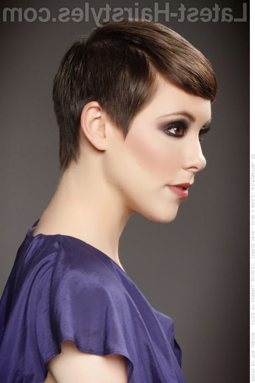 Pin On Hairstyles Inside Pixie Haircuts With Tapered Sideburns (View 6 of 25)