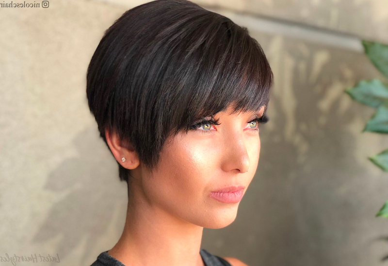 18 Best Short Dark Hair Color Ideas Of 2020 Within Most Up To Date Dark Pixie Haircuts With Blonde Highlights (View 24 of 25)