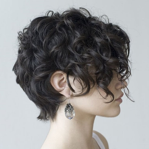 25 Chic Short Hairstyles For Thick Hair – The Trend Spotter In Short Feathered Bob Crop Hairstyles (View 3 of 25)