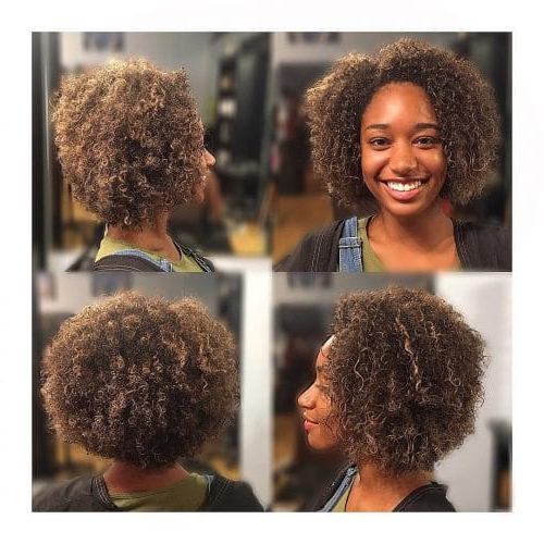 40 Hottest Curly Bob Hairstyles For Naturally Curly Hair In Natural Bob Hairstyles (View 16 of 25)