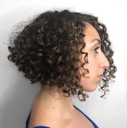 50 Newest Curly Bob Hairstyles | Julie Il Salon In Curly Bob Hairstyles (View 18 of 25)
