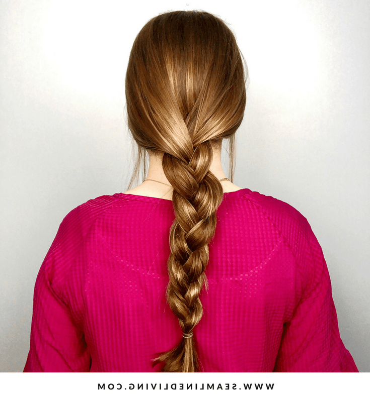 8 Braided Hairstyles - Common Types Of Braids & How To intended for Best and Newest Three Strand Pigtails Braid Hairstyles