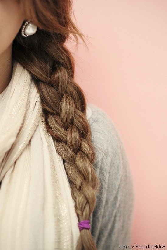 Basic Three Strand Braid | Fab Fashion Fix Regarding Latest Three Strand Pigtails Braid Hairstyles (View 21 of 25)