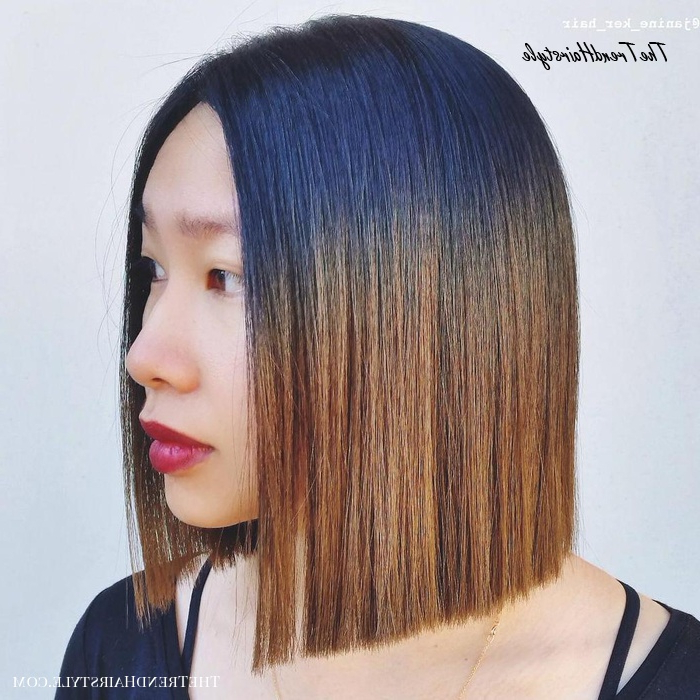 Chic Gray Blunt Haircut - 50 Spectacular Blunt Bob within Sleek Blunt Bob Hairstyles