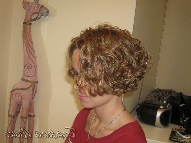 Fun Loose Curl Permed Bob! | Short Permed Hair, Short Curly Intended For Permed Bob Hairstyles (View 7 of 25)