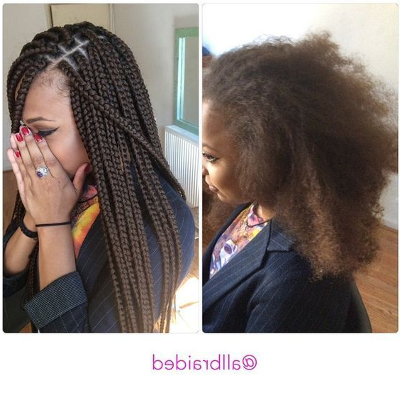 Medium Sized Box Braid On A Curly Natural Hair (View 7 of 25)