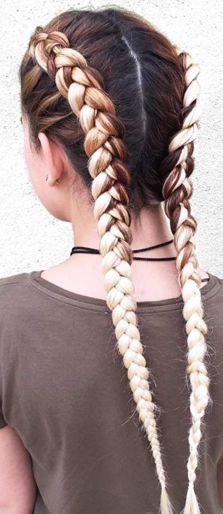 Pin On Dutch Braids With Most Current Three Strand Pigtails Braid Hairstyles (View 7 of 25)