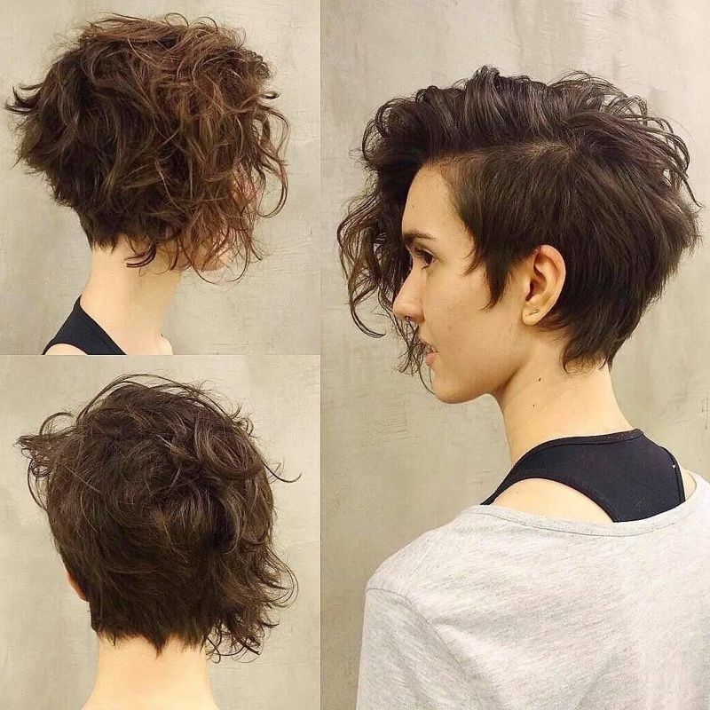 Pin On Gimme A Head With Hair With Regard To Latest Edgy & Chic Short Curls Pixie Haircuts (View 10 of 25)