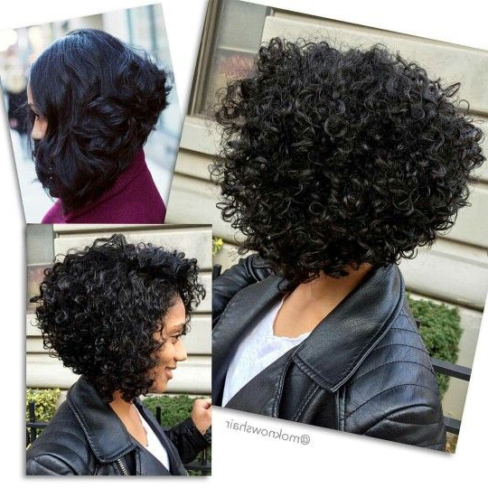 Pinlena Scott On Natural Hurr | Short Natural Curly Hair Inside Naturally Curly Bob Hairstyles (View 2 of 25)