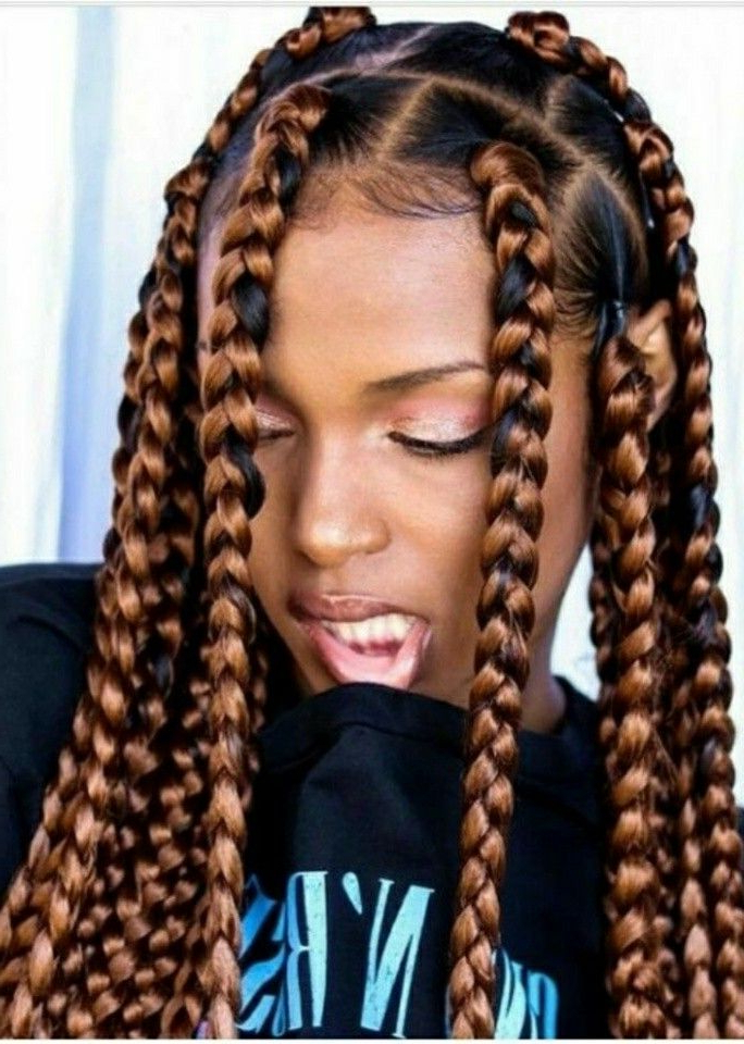 Pinnicole Armour On Braids And Twists In 2019 | Braided Inside Best And Newest Beaded Plaits Braids Hairstyles (View 24 of 25)