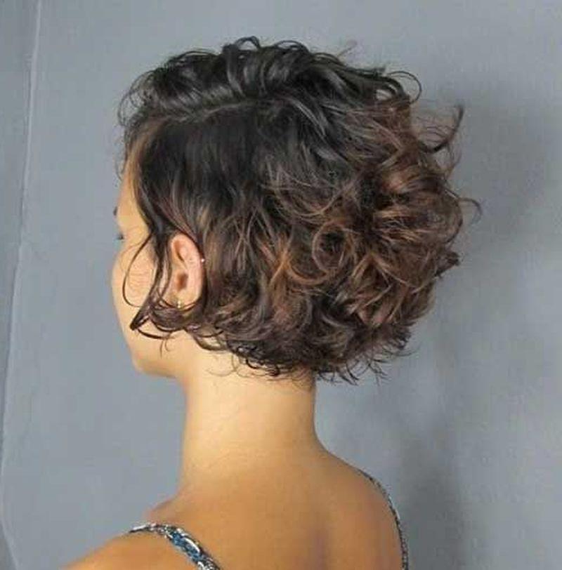 Pinshahin Hashemi On Hair Styles   Curly Hair Styles for Cute Short Curly Bob Hairstyles