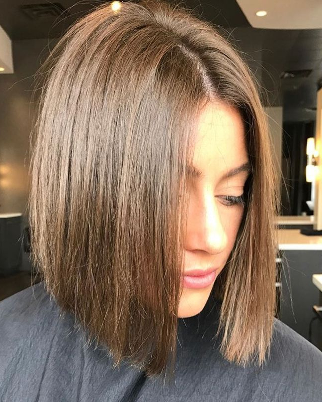 Featured Photo of Shiny Strands Blunt Bob Hairstyles