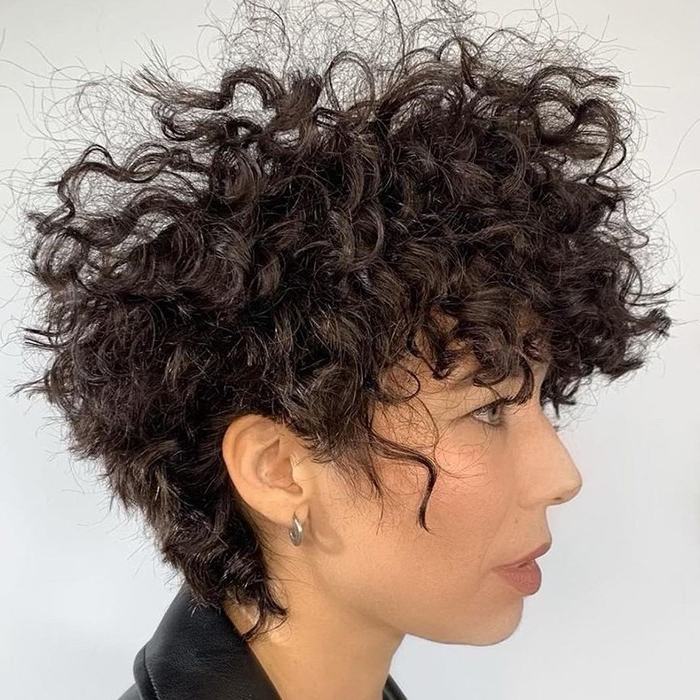Top 10 Best Curly Haircuts Of 2019 | Naturallycurly Within Recent Edgy & Chic Short Curls Pixie Haircuts (View 25 of 25)