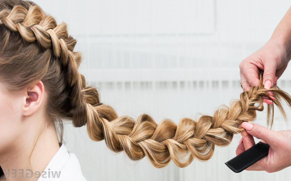 What Are Boho Braids? (With Picture) Pertaining To Most Current Asymmetrical French Braid Hairstyles (View 14 of 25)
