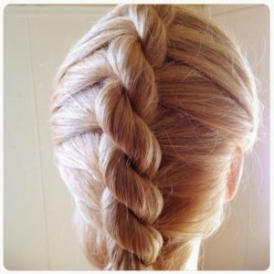 40 Different Types Of Braids For Hairstyle Junkies And For Most Recently Rope And Braid Hairstyles (View 10 of 25)