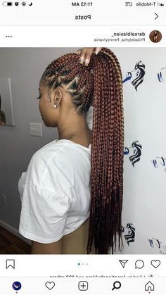 Bestsellers# Pony Tail Box Braids 2020 In 2020   Big Box Inside Most Up To Date Loose Historical Braid Hairstyles (View 5 of 25)