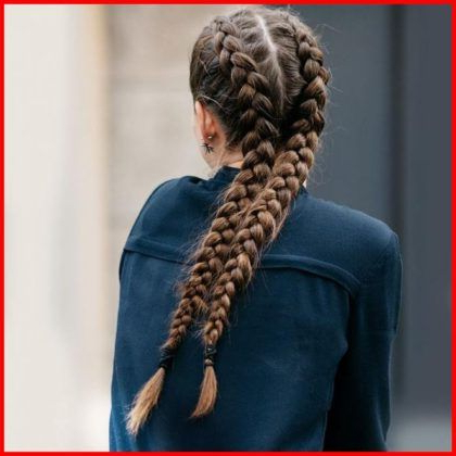 Double Dutch Fishtail Braids (With Images) | Fish Tail With Regard To Most Popular Double Braided Single Fishtail Braid Hairstyles (View 20 of 25)