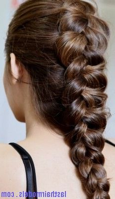 Dutch Braid7 | Last Hair Models , Hair Styles | Dutch Inside Most Recently Dutch Heart Braid Hairstyles (View 2 of 25)