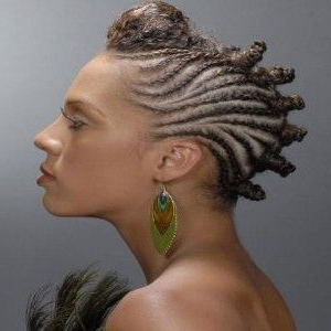 Eye Catching Braided Mohawk Hairstyles   Hair Styles With Regard To Most Recently Pouf Braided Mohawk Hairstyles (View 12 of 25)