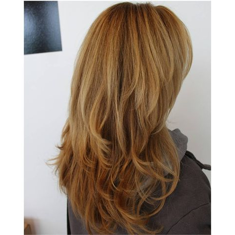 Half Head Of Highlights Using Blacklight Lightener And A Throughout Most Recent Loose Highlighted Half Do Hairstyles (View 24 of 25)