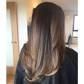 Asian Balayage Straight Hair Caramel | Balayage Straight Throughout Subtle Balayage Highlights For Short Hairstyles (View 19 of 25)