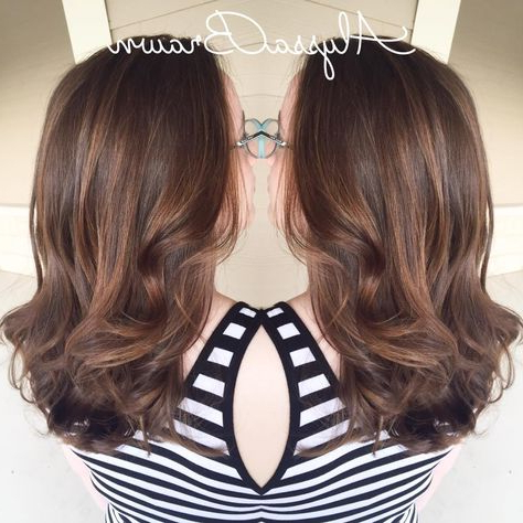 Brunette Hair, Balayage Ombre, Dark To Light, Curly Hair Within Short Sun Kissed Hairstyles (View 16 of 25)