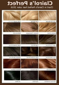 Chart In Clairol'S Perfect Hair Color | Hair Color Shades Intended For Brown Blonde Sweeps Of Color Hairstyles (View 15 of 25)