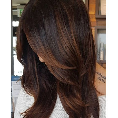 Chocolate Caramel Brunette Blend Using Redken Shades Eq With Regard To Chestnut Short Hairstyles With Subtle Highlights (View 8 of 25)