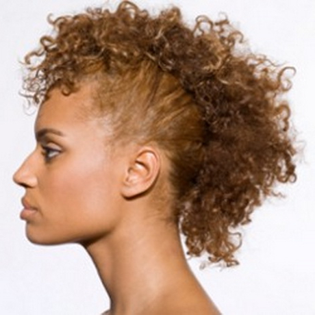 Curly Mohawk Hairstyles With Most Current Coral Mohawk Hairstyles With Undercut Design (View 9 of 25)