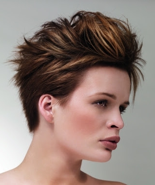 Design Mohawk Hair: September 2013 Inside Most Up To Date Coral Mohawk Hairstyles With Undercut Design (View 13 of 25)
