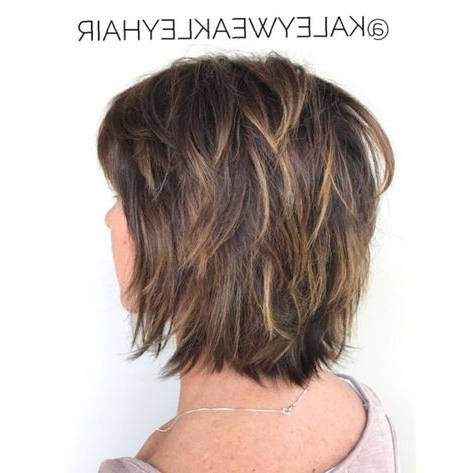 Feathered Bob With Bangs And Highlights | Short Shag Within Shaggy Bob Hairstyles With Face Framing Highlights (View 22 of 25)