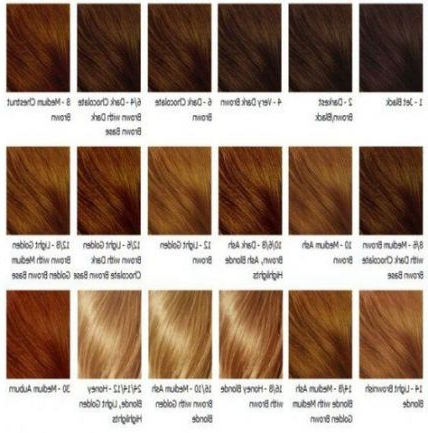 Hair Color Honey Brows Make Up 61 Best Ideas | Brown Hair With Brown Blonde Sweeps Of Color Hairstyles (View 22 of 25)