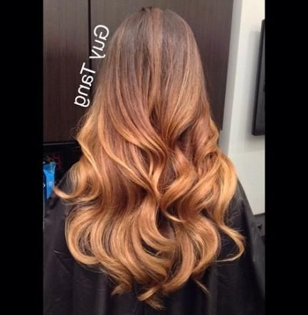 Hair Color Ideas For Brunettes Balayage Guy Tang Ash With Regard To Ash Blonde Balayage Ombre On Dark Hairstyles (View 3 of 25)