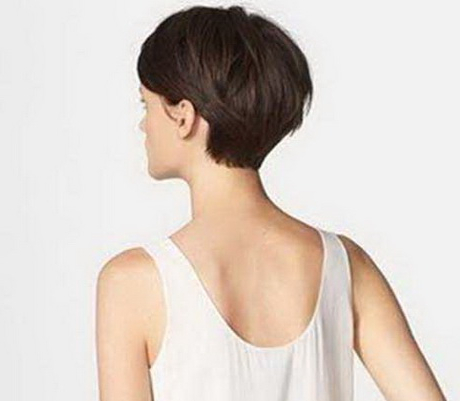 Long Pixie Cut Back View Intended For Sexy Long Pixie Hairstyles With Babylights (View 12 of 25)