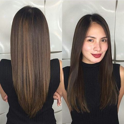 Long Straight Dark Brown Hair With Subtle Balayage Throughout Chestnut Short Hairstyles With Subtle Highlights (View 21 of 25)