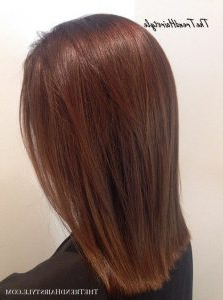 Medium Chestnut With Subtle Highlights – 40 Unique Ways To Regarding Chestnut Short Hairstyles With Subtle Highlights (View 7 of 25)