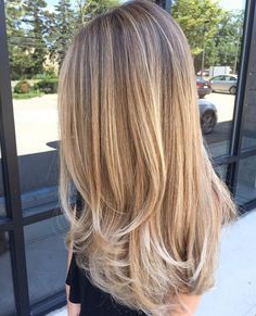 Pin On Hair Intended For Blonde Balayage On Short Dark Hairstyles (View 14 of 25)
