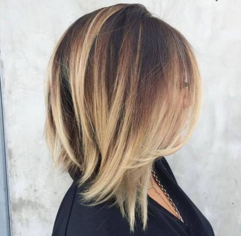 Pin On Hair Intended For Blonde Balayage On Short Dark Hairstyles (View 8 of 25)