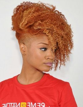 Pin On Mohawk Haircut For Recent Coral Mohawk Hairstyles With Undercut Design (View 20 of 25)