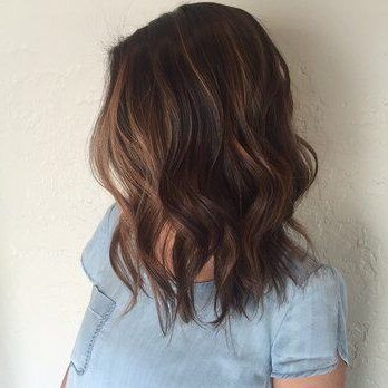 Pin Su Hair Options Pertaining To Short Brown Balayage Hairstyles (View 15 of 25)