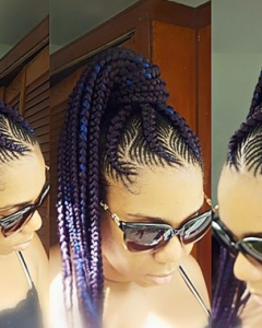 Two-Tone Braided Pony Hairstyles