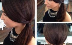 Sleek Ladylike Ponytail Hairstyles