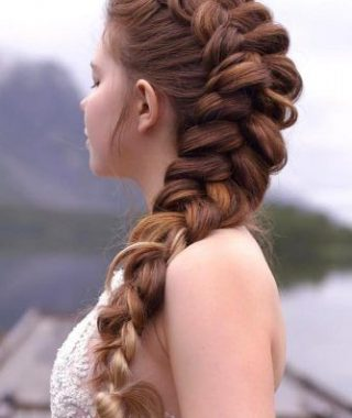 Double Fishtail Braids For Prom