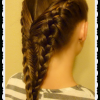 Mermaid Braid Hairstyles With A Fishtail (Photo 14 of 25)