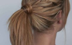 Braided Maze Low Ponytail Hairstyles